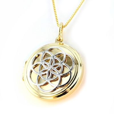 Collier Medallion Amulett 585 Gold Bicolor 1 Brillant 0,01 ct SI weiss